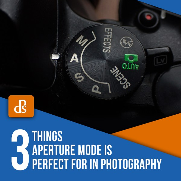 3 Things Aperture Mode is Perfect For in Photography