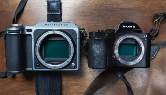 Back to Basics: What is the Reciprocal Rule in Photography?