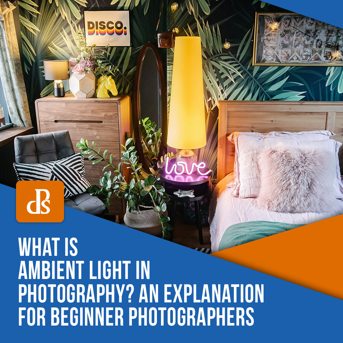 what-is-ambient-light-in-photography
