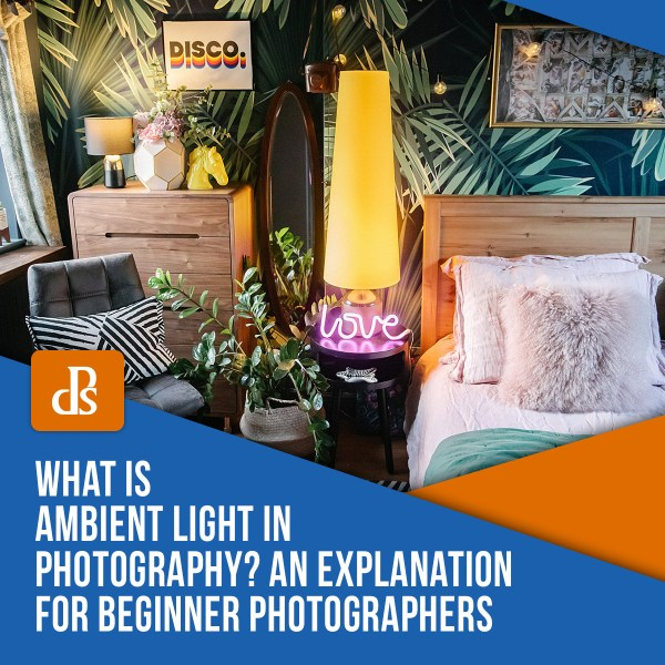 What is Ambient Light in Photography? An Explanation for Beginner Photographers