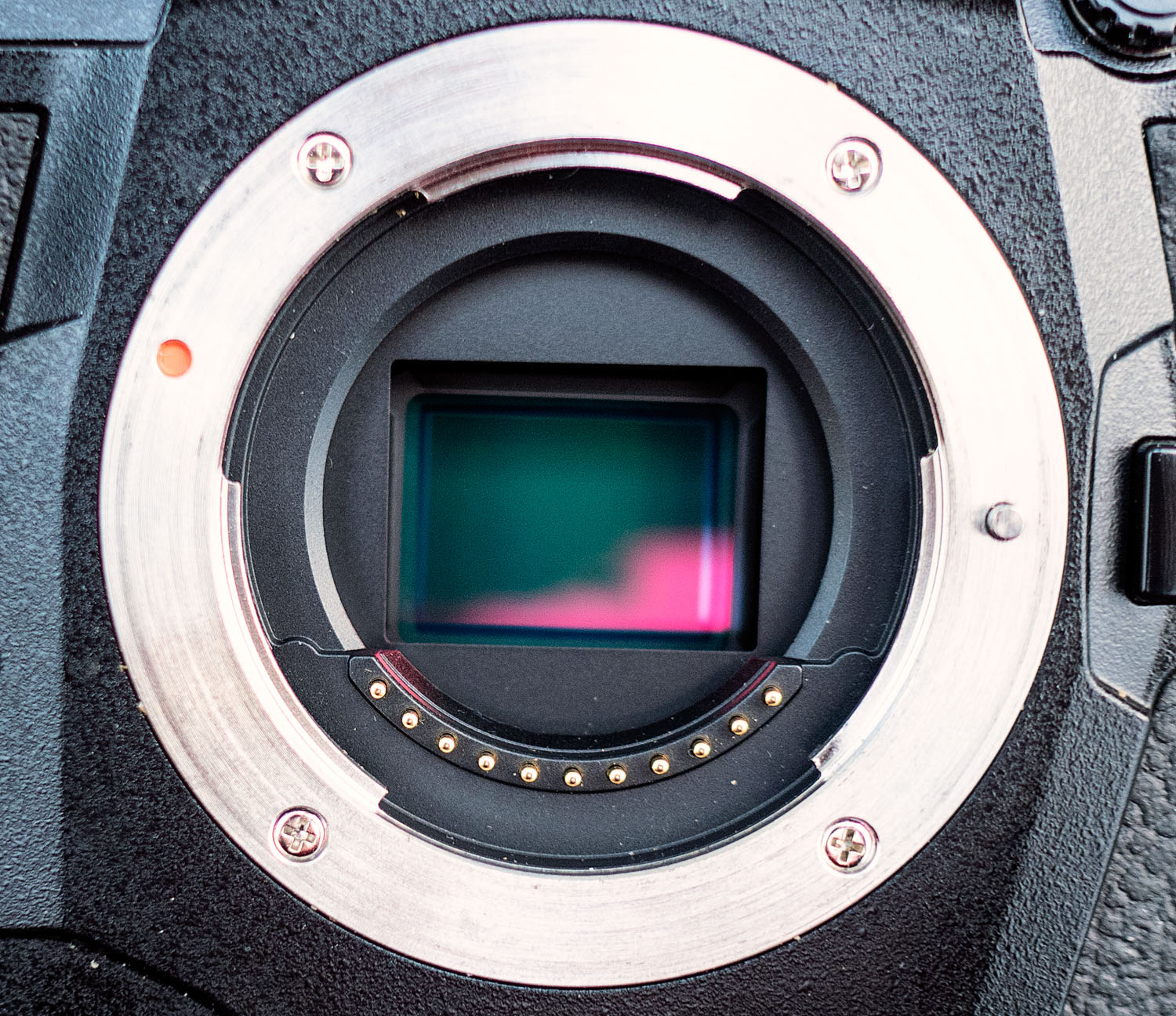 Image sensor from an Olympus EM1X