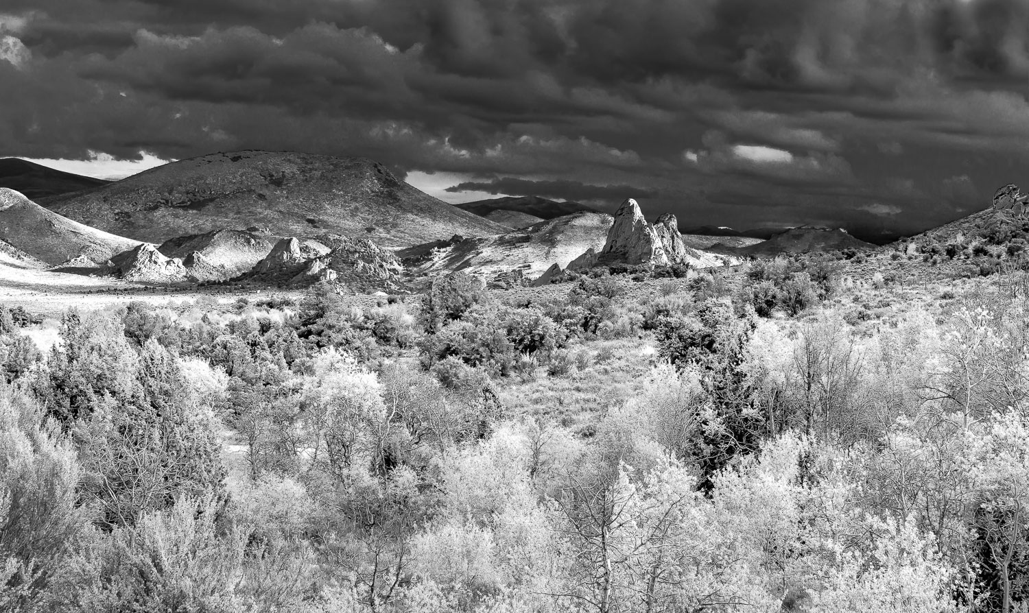 Simulated Infrared with Lightroom
