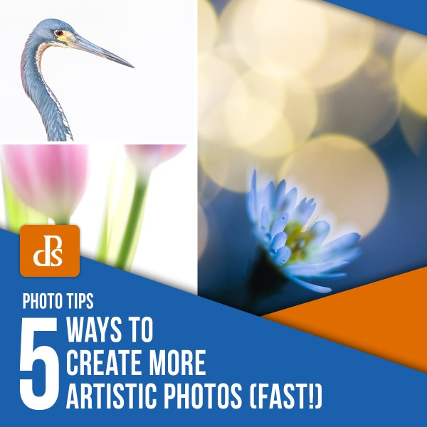 5 Ways to Create More Artistic Photos (Fast!)