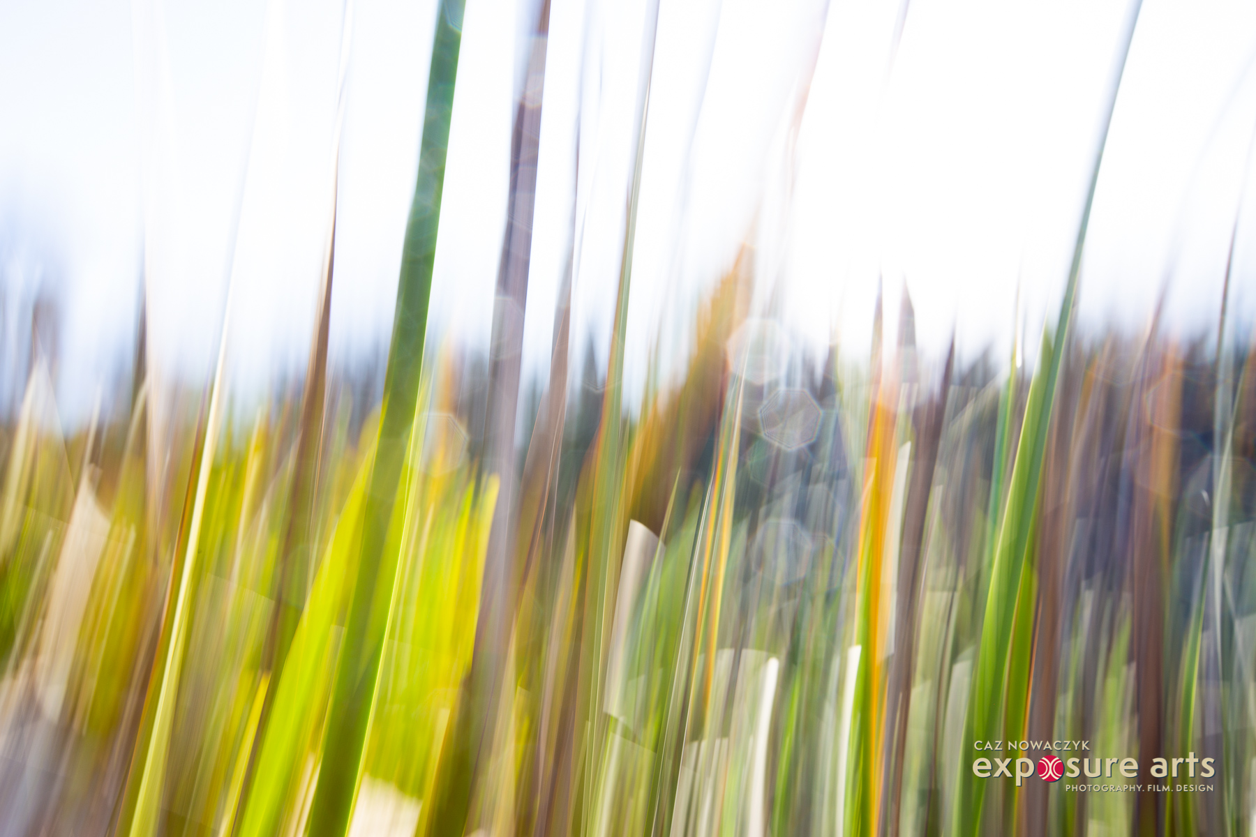 Weekly Photography Challenge – ICM -Intentional camera movement green grass with sun in background