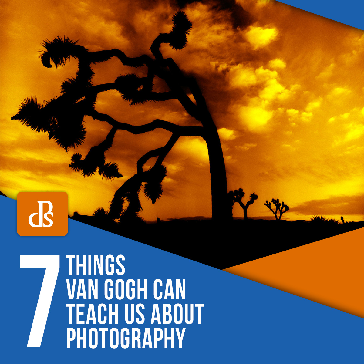 7 Things Van Gogh Can Teach Us About Photography