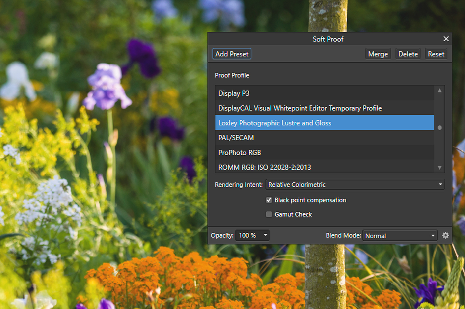 Color management in Affinity photo - soft proofing