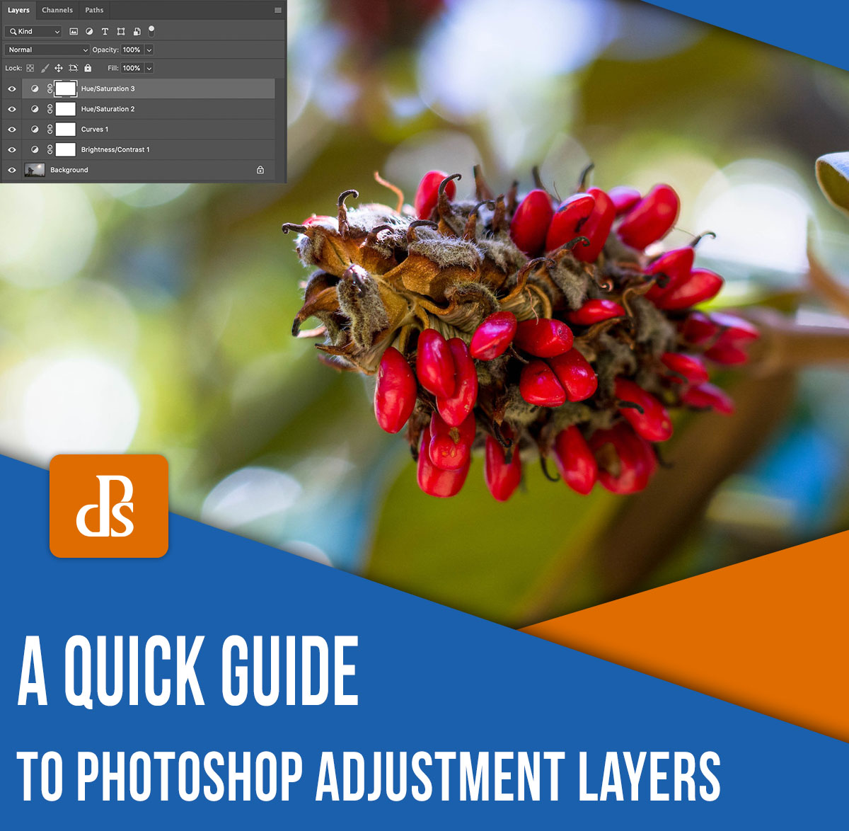 photoshop adjustment layers a quick guide