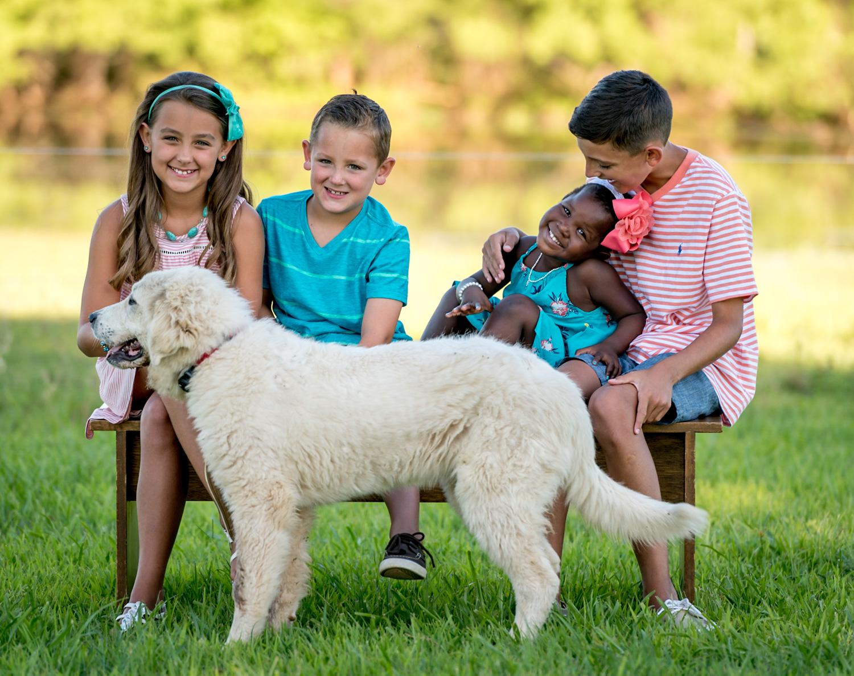 ideias para retratos de família animais de estimação