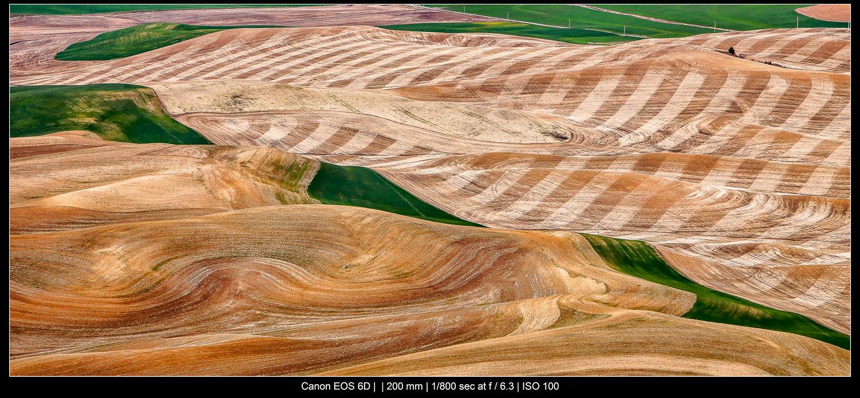 Vista de cima, Palouse