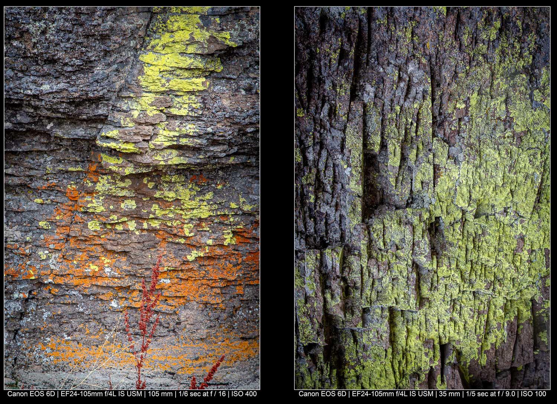 Fotografia de paisagem abstrata: procure os detalhes