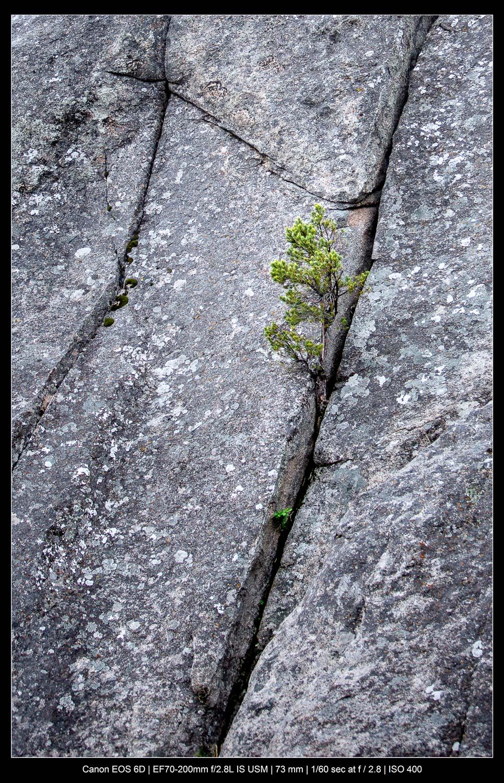 fotografia de paisagem abstrata