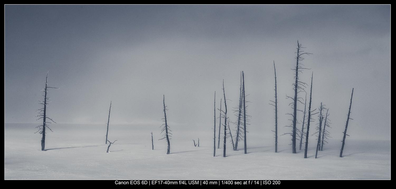Tempestade de neve de Yellowstone