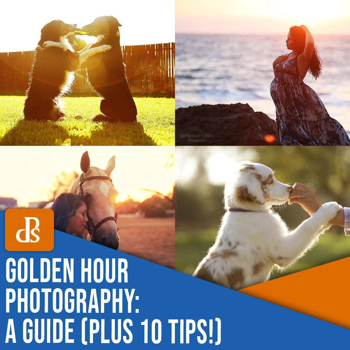 Golden Hour Photography: um guia mais 10 dicas