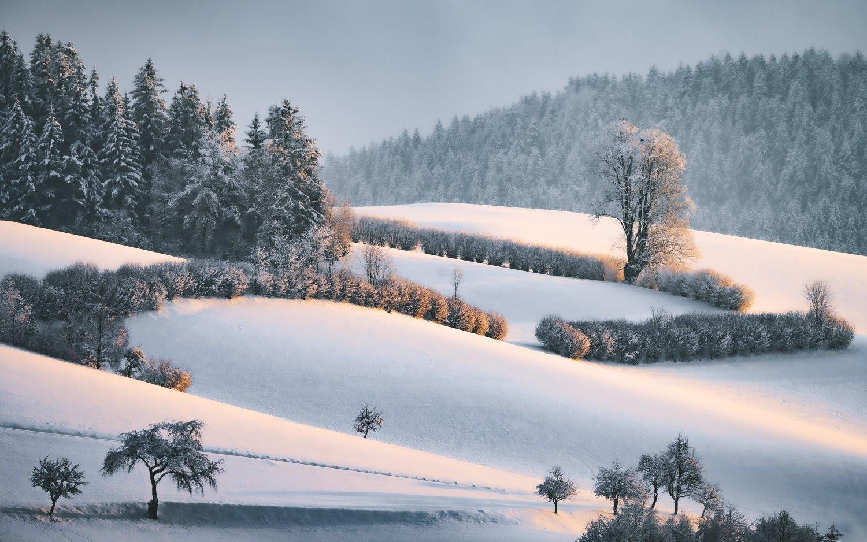 fotografia de paisagem dicas neve na hora dourada
