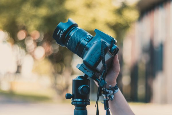 7 Situations When Manual Focus Is Better Than Auto
