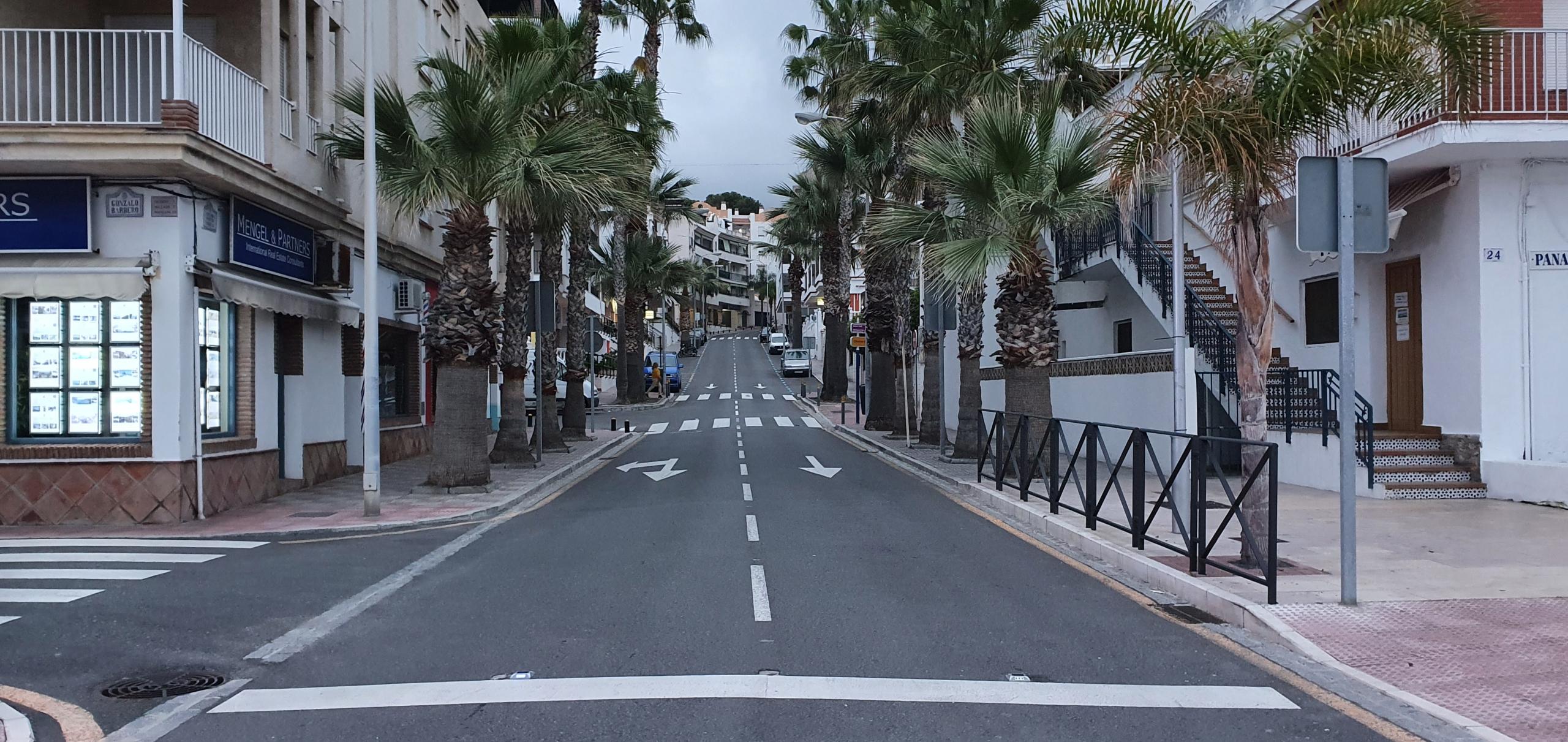 rua com palmeiras