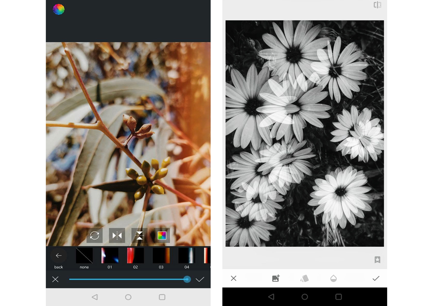 editing apps for creative phone photography