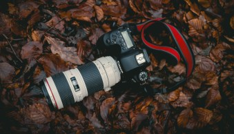 How to Avoid a Dirty DSLR Image Sensor
