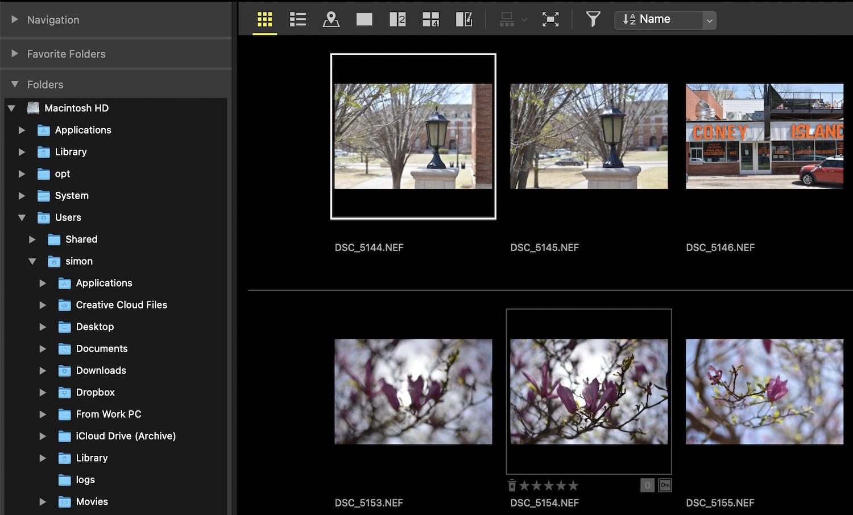 Nikon NX Studio Review Folder Organization