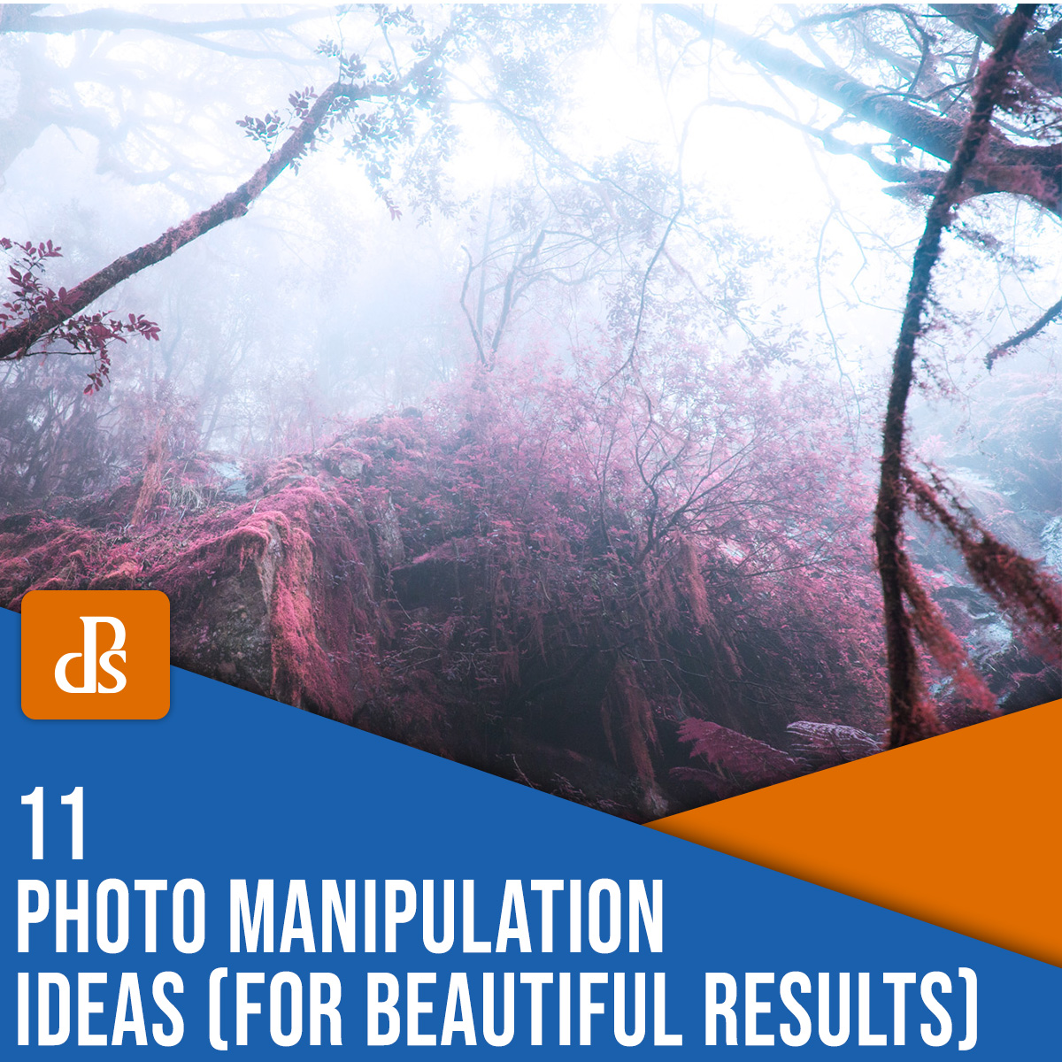 11 Photo Manipulation Ideas (for Beautiful Results)