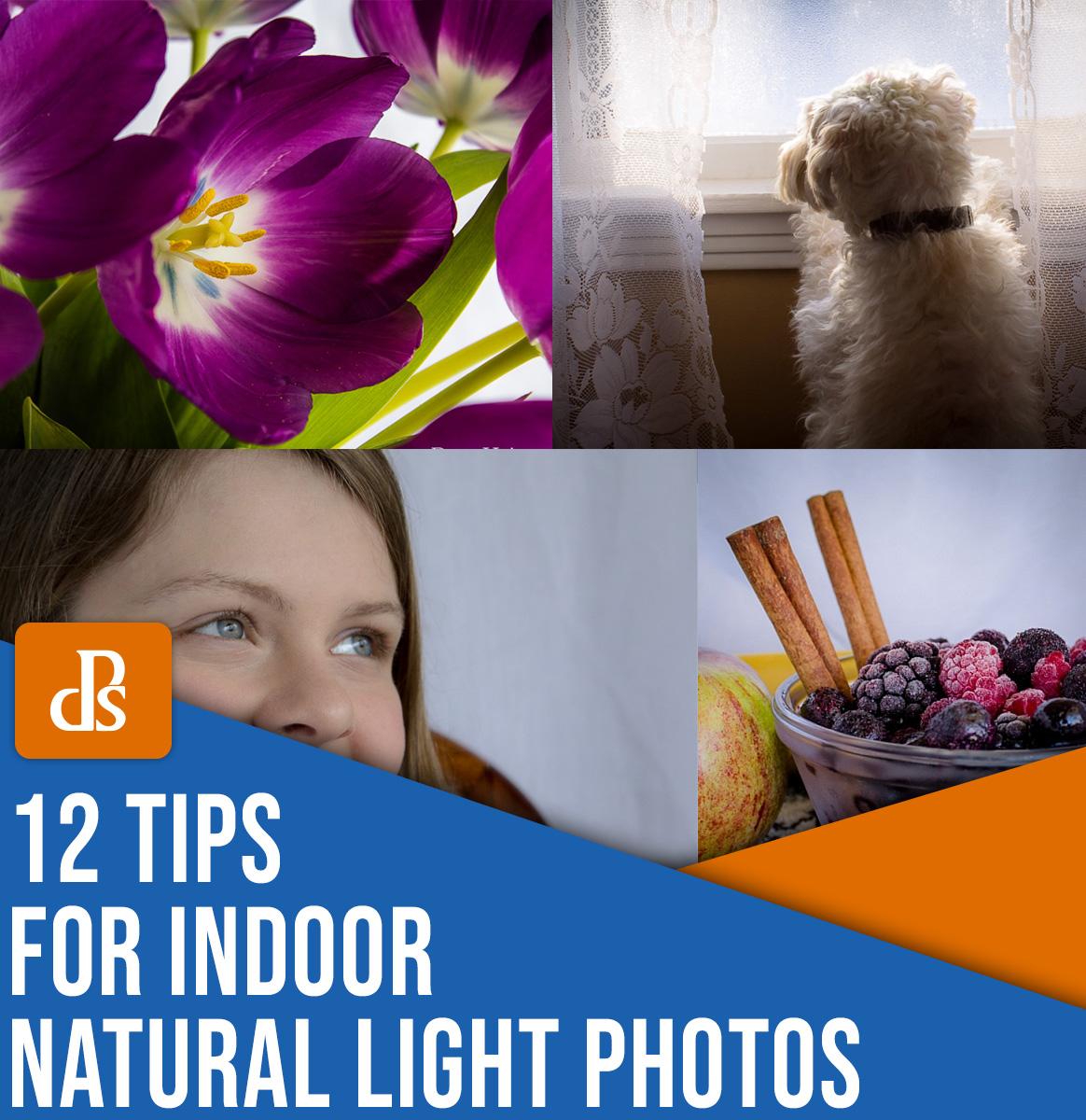 12 dicas para fotografia com luz natural em ambientes internos