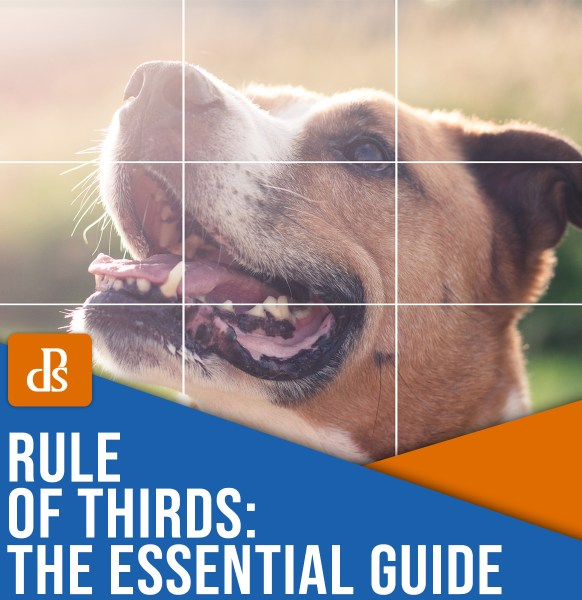rule of thirds the essential guide