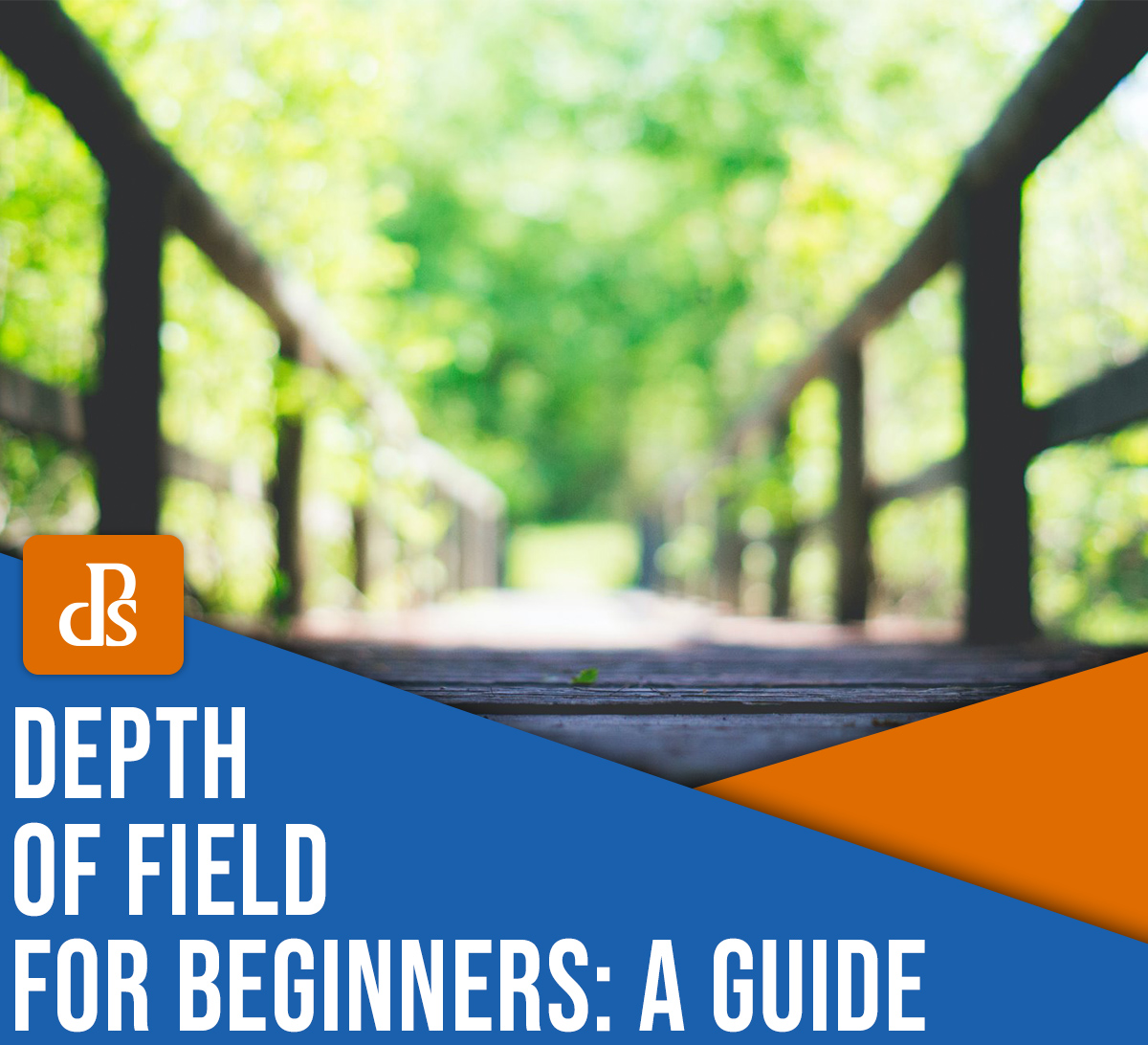 depth of field for beginners: a guide