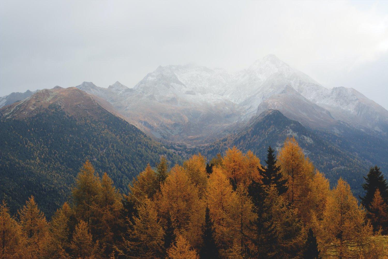 árvores de outono com montanhas ao fundo