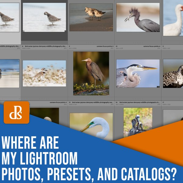 where are my Lightroom photos, presets, and catalogs stored?