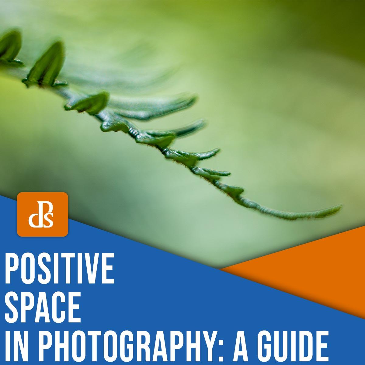 מרחב חיובי בצילום: מדריך