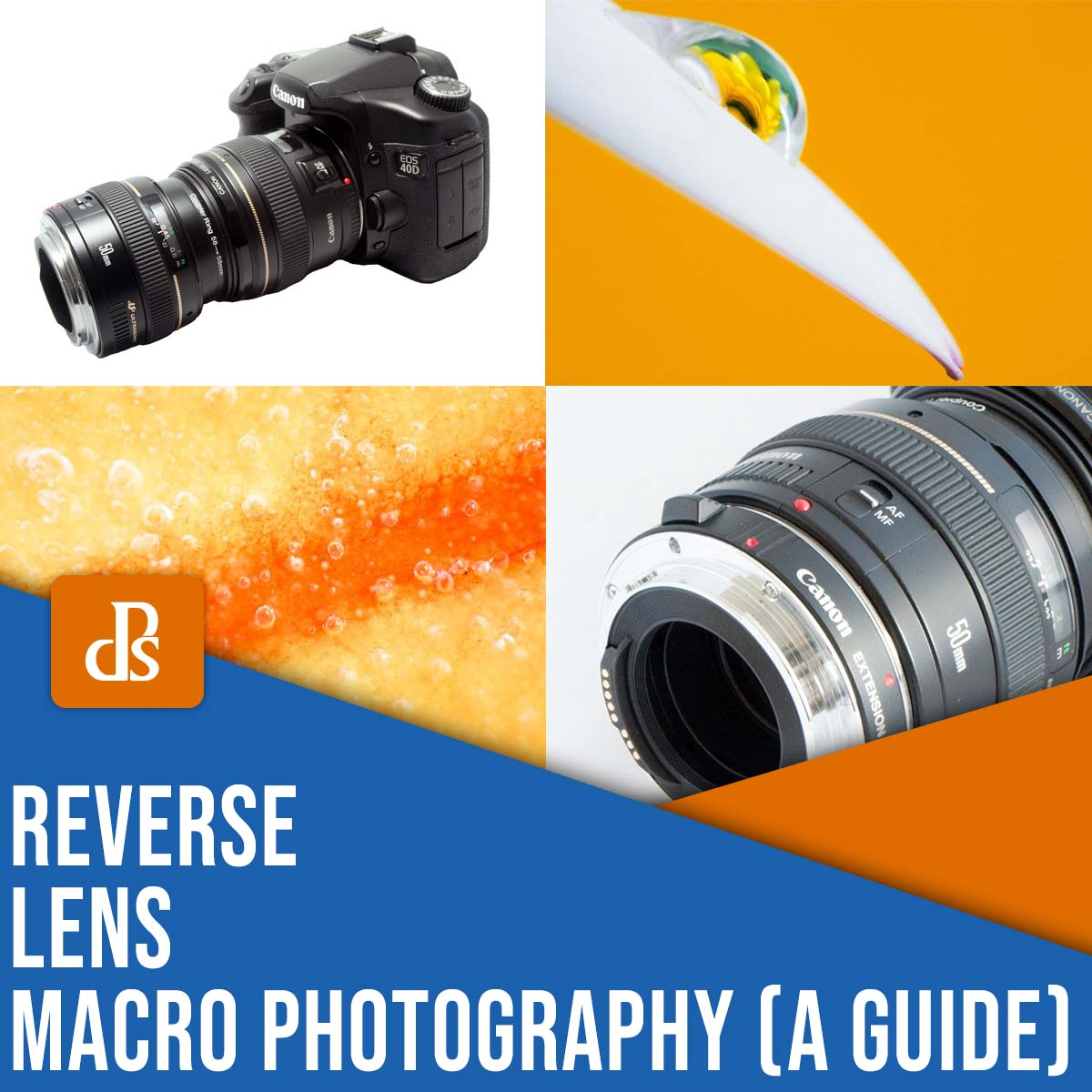 reverse lens macro photography: a guide