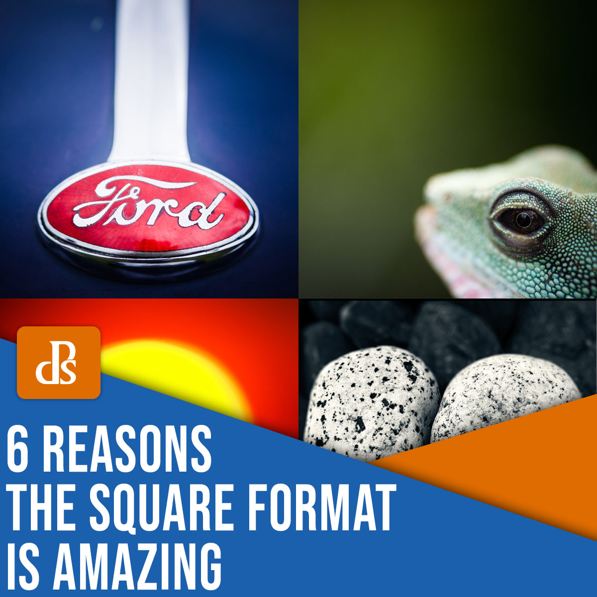 6 reasons the square format is amazing