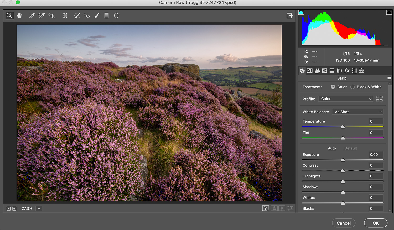 the Camera Raw filter window in Photoshop