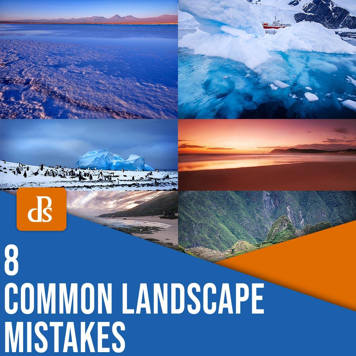 8 common landscape mistakes