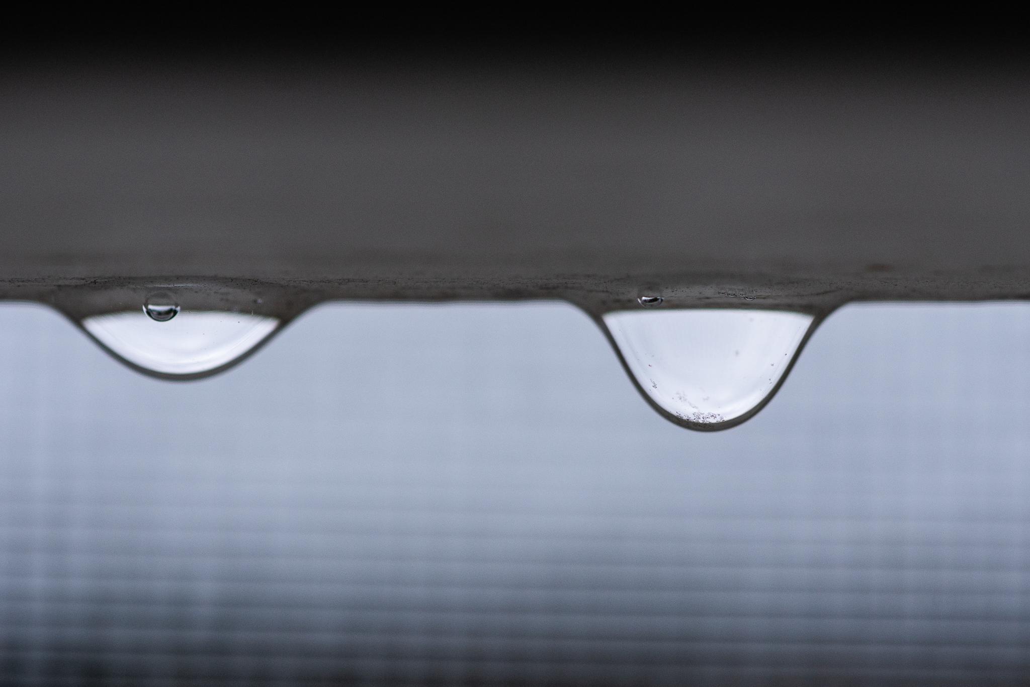 Rain Drops from the Melbourne Rain