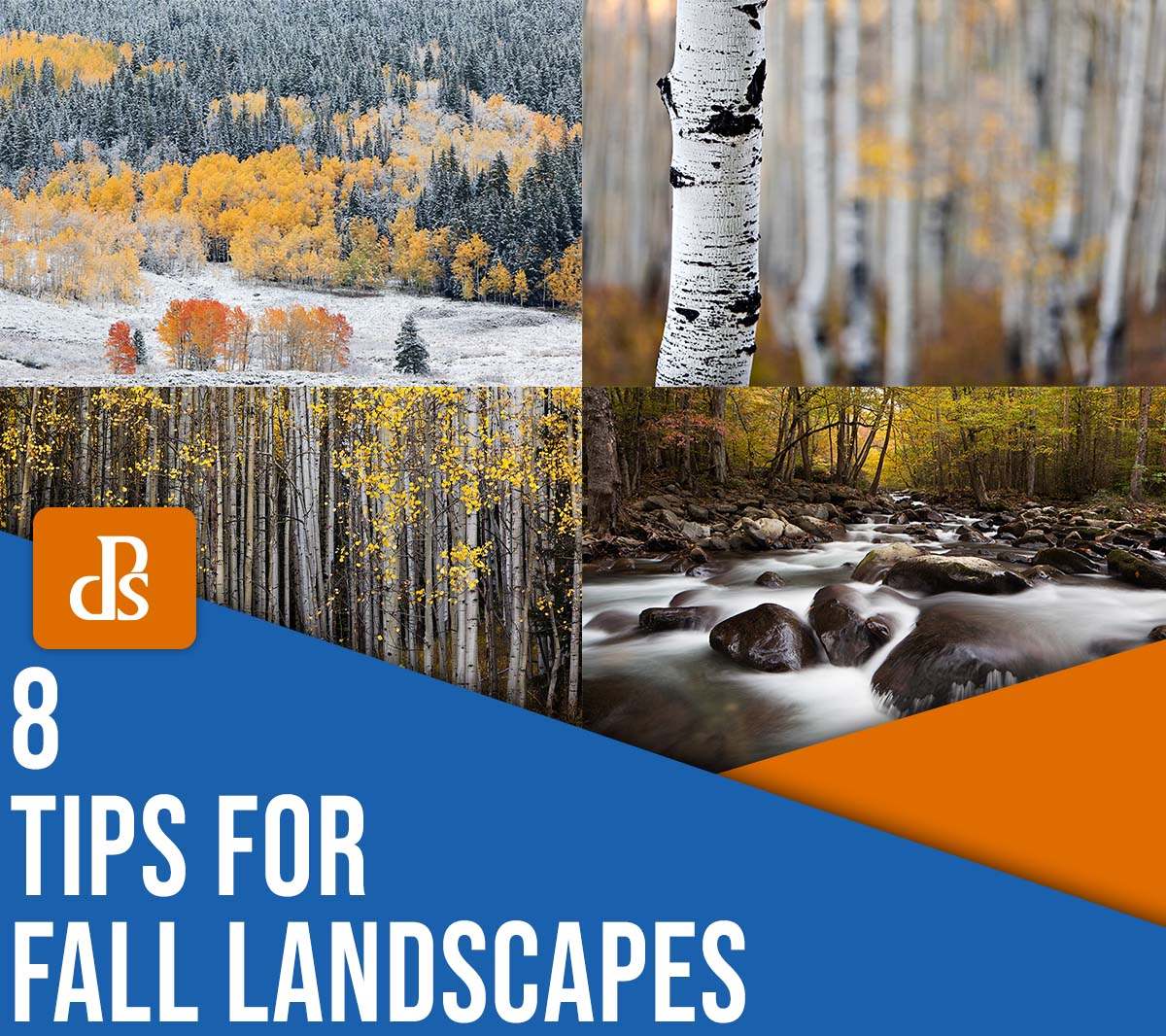 8 tips for fall landscape photography