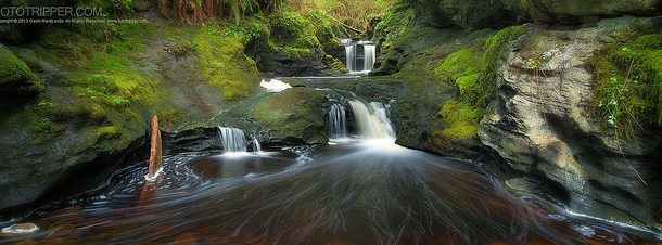 Image: Sony A7R Example shot from one exposure 'Tendrils' By Gavin Hardcastle – cl...