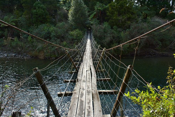 26 Sublime Images of Bridges and Connection