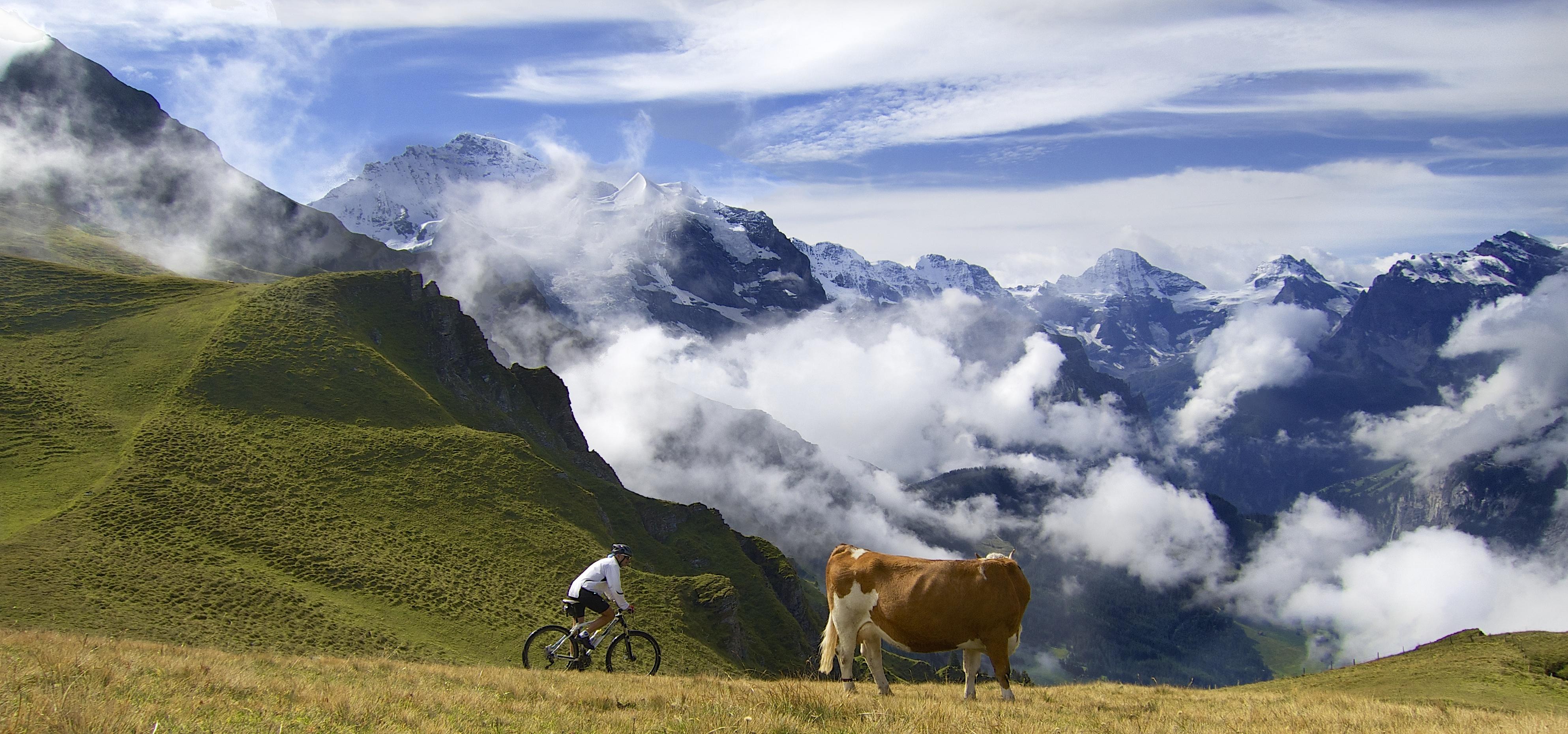 Will_cyclist
