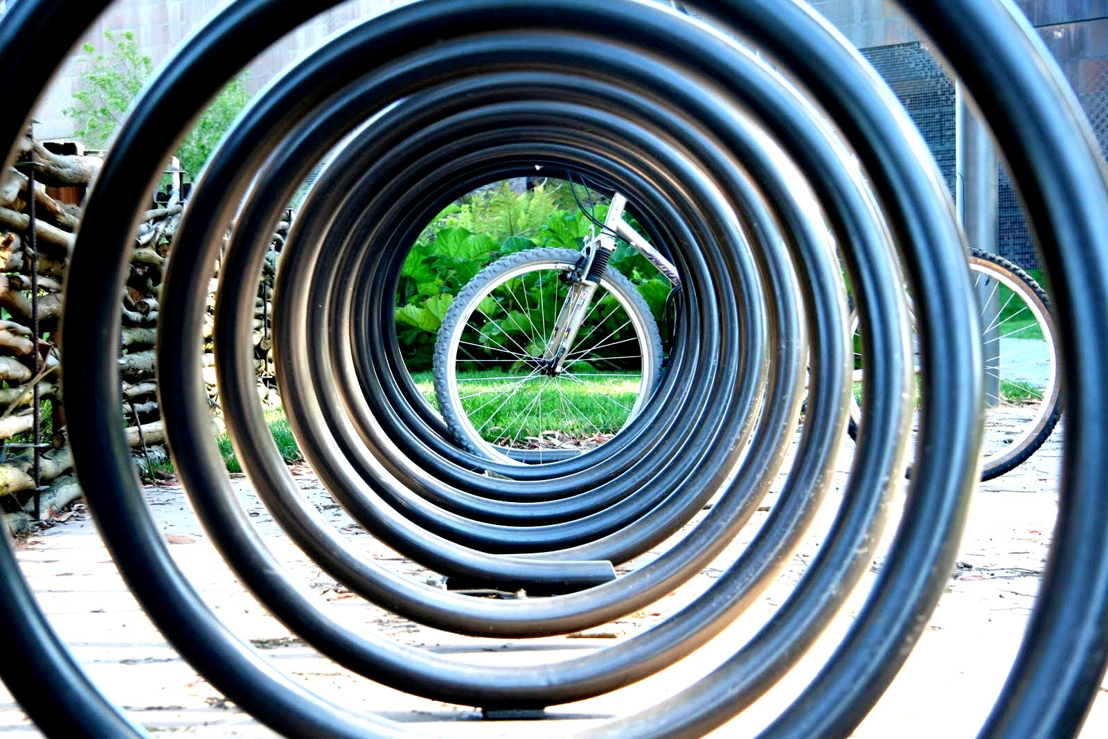 Round and Round - 19 Images of Circular Things