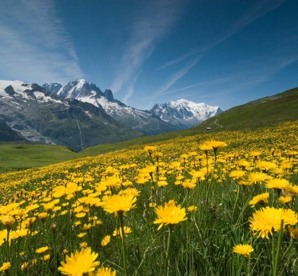 Максимизация глубины резкости в пейзажной фотографии