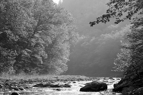 West-River-Jamaica