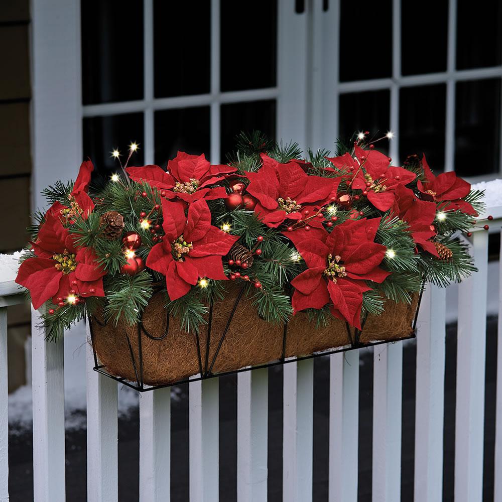 The Cordless Prelit Poinsettia Flower Box Hammacher