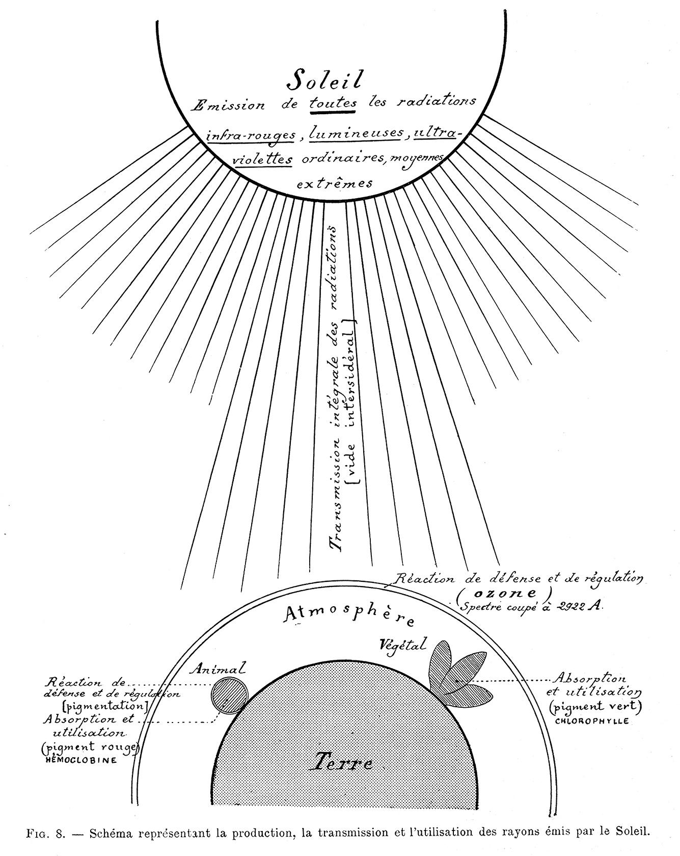 Our Friend The Sun