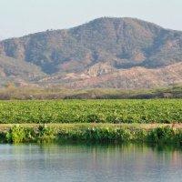 Bodegas Pomar brinda nuevas opciones de visitas guiadas