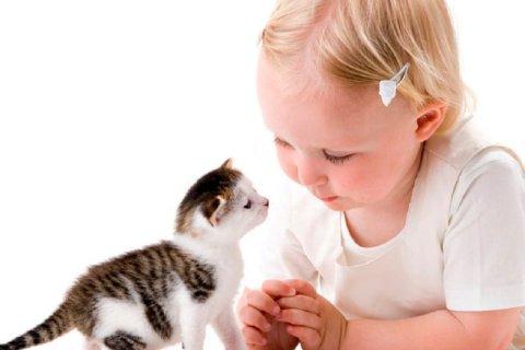 Pasarela infantil por los derechos de los animales