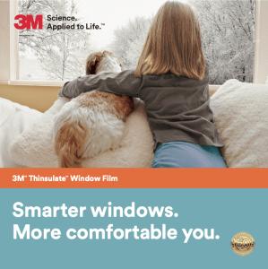Digital Bravado Smarter-windows