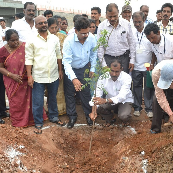 Mr. Palla Srinivas, MLA along with GPL officials planting the saplings at Gangavaram Port
