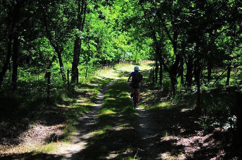 doeberitzer heide pathway