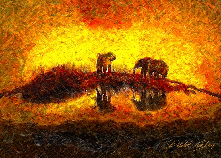 Kinship, elephants